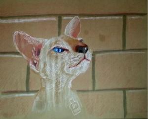 Katze-kl